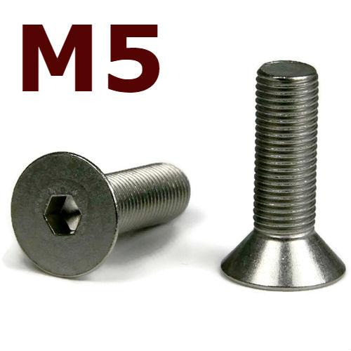 M5x25 Stainless Steel Flat Head Cap Screw