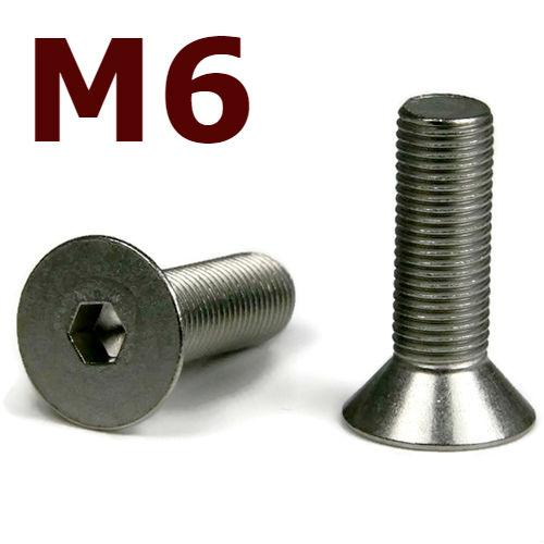 M6x25 Stainless Steel Flat Head Cap Screw